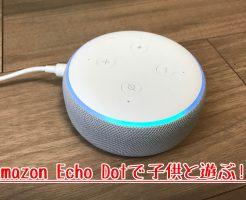 Amazon Echo Dotってどう?子供と遊ぶために買ってみた!3歳児の声は認識しないの?